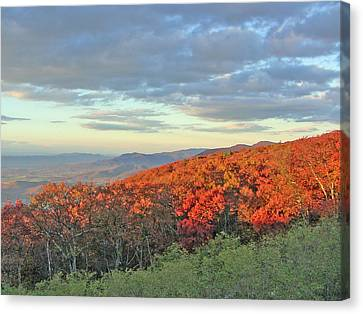 Orange Velvet In Shenandoah Canvas Print