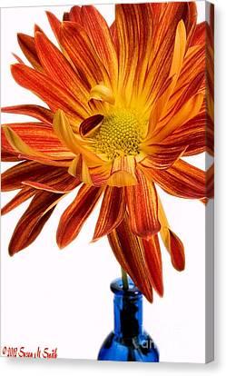 Susan Smith Canvas Print - Orange You Happy by Susan Smith