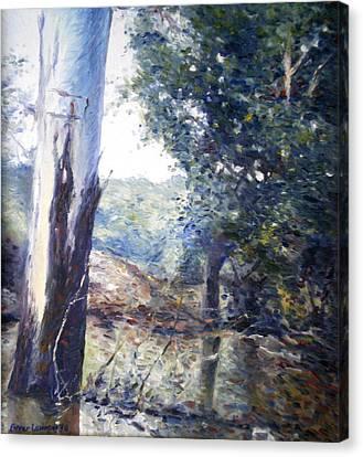 Orara River In Flood Nsw Australia 1998 Canvas Print by Enver Larney