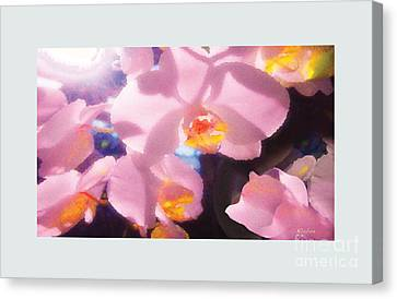 Orchids Canvas Print by David Klaboe