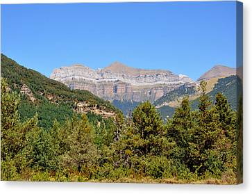 Ordena National Park Canvas Print by Miguel Sotomayor