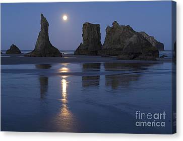 Oregon Coast Canvas Print by John Shaw and Photo Researchers