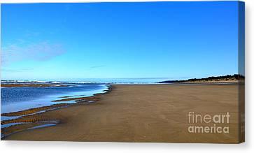 Oregon Coast Canvas Print by Tanya  Searcy