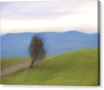 Oregon Country Road Canvas Print by Carol Leigh