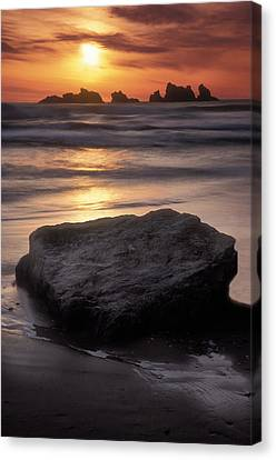 Oregon Sunset Canvas Print by Dave Mills