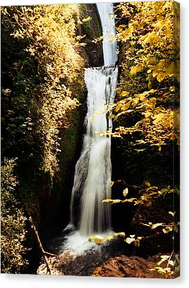 Canvas Print featuring the photograph Oregon Waterfall Yellows by Maureen E Ritter