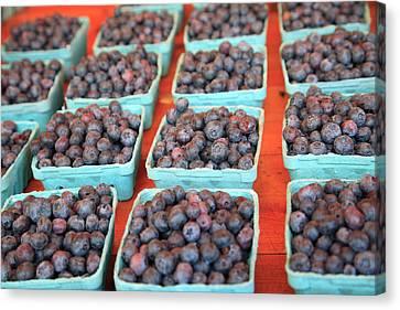 Organic Blackberries Canvas Print by Wendy Connett