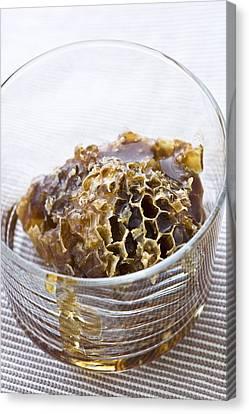 Organic Honey Comb Canvas Print by Frank Tschakert