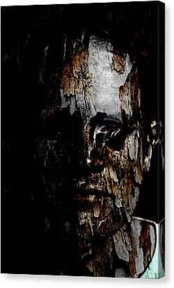 Organic Metamorphosis Canvas Print by Christopher Gaston