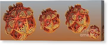 Fractal Orbs Canvas Print - Organic Orbs by Ron Bissett