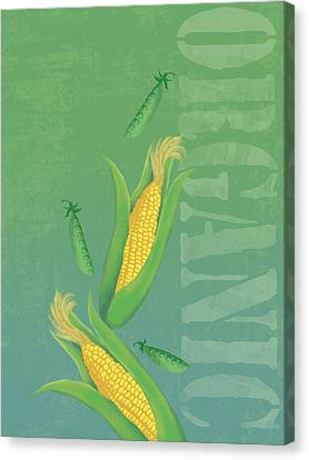 Organic Produce Illustration Canvas Print by Don Bishop
