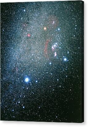 Monoceros Canvas Print - Orion, Canis Major & Monoceros Constellations by Luke Dodd