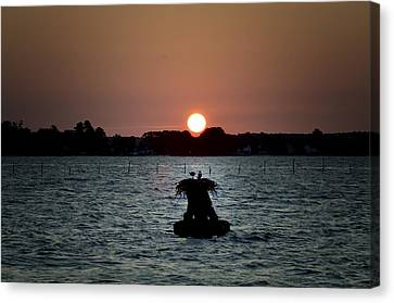 Osprey Sunrise Canvas Print
