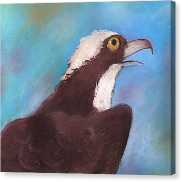 Osprey Canvas Print by Susan Herbst