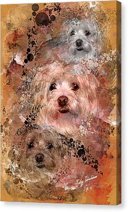 Our Mandie Canvas Print by Kathy Tarochione