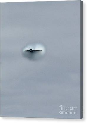 Canvas Print featuring the photograph Out From The Gray by Alex Esguerra