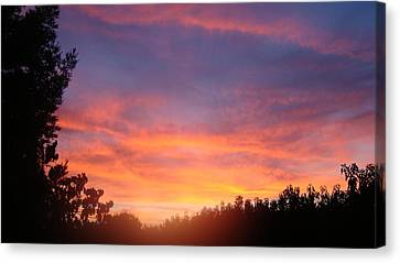 Canvas Print featuring the photograph Out My Backdoor  by Tamara Bettencourt