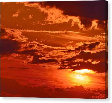 Out My Door Canvas Print by Tony Beck