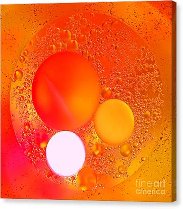 Out There Canvas Print by Olivier Le Queinec