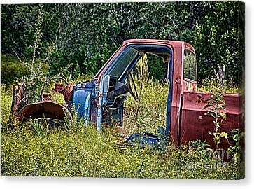 Out To Pasture Canvas Print by Ken Williams