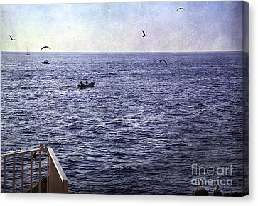 Out To Sea Canvas Print by Madeline Ellis