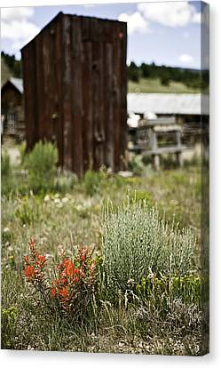 Outhouse Path Canvas Print by Melany Sarafis