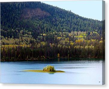 Outlook 18 Canvas Print by Will Borden