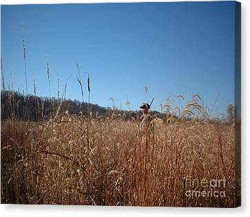 Canvas Print featuring the photograph Outstanding In His Field by Mark McReynolds