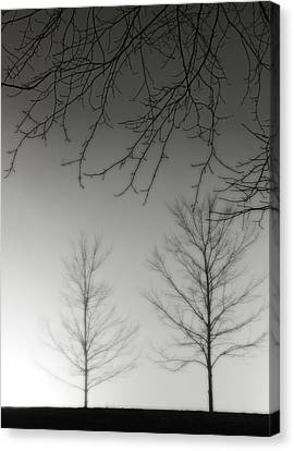 Outstretched Limbs Canvas Print