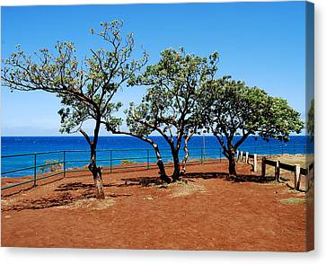 Canvas Print featuring the photograph Overlook In Maui by Caroline Stella