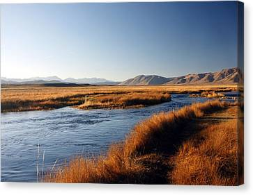 Owens River Canvas Print by Michael Courtney