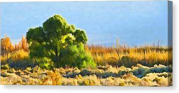 Owens Valley Tree And Brush Canvas Print