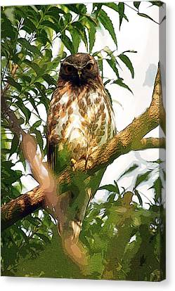 Canvas Print featuring the digital art Owl In Contemplation by Pravine Chester