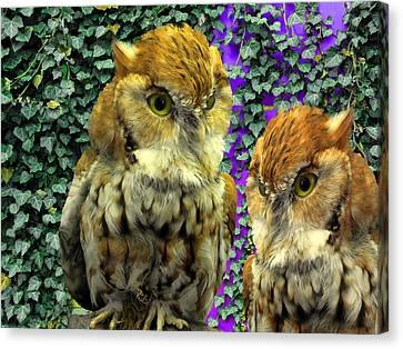 Owl Look Canvas Print by Lynda Lehmann