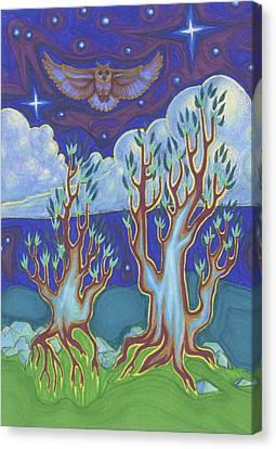 Owl Sky Canvas Print by James Davidson