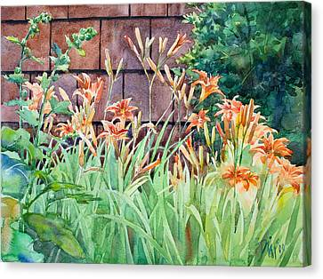 Oxenden Lilies Canvas Print by Peter Sit
