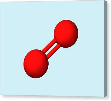 Oxygen Molecule Canvas Print by Dr Tim Evans