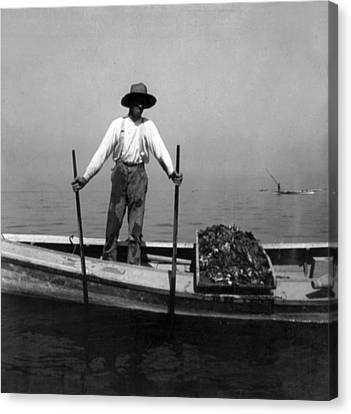 Oyster Fishing On The Chesapeake Bay - Maryland - C 1905 Canvas Print by International  Images