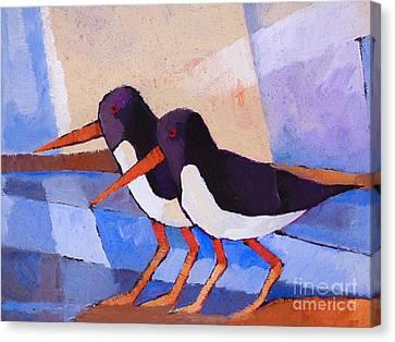 Oystercatcher Couple Canvas Print