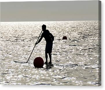 Paddle Boarding Canvas Print by David Lee Thompson
