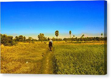 Canvas Print featuring the photograph Paddy Field by Arik S Mintorogo