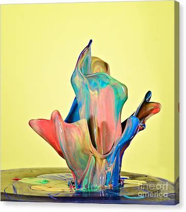 Paint Art Canvas Print
