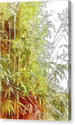 Painted Bamboo Canvas Print by Terry Cork