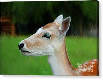 Painted Deer Canvas Print