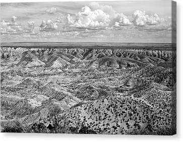 Painted Desert In B And W Canvas Print by Melany Sarafis