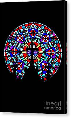 Canvas Print featuring the photograph Painted Glass by Randall  Cogle