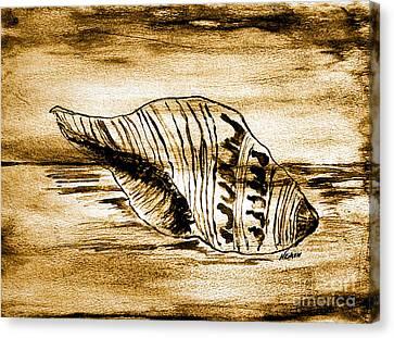 Painted Seashell Canvas Print by Marsha Heiken