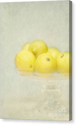 Painterly Lemons Stilllife Canvas Print