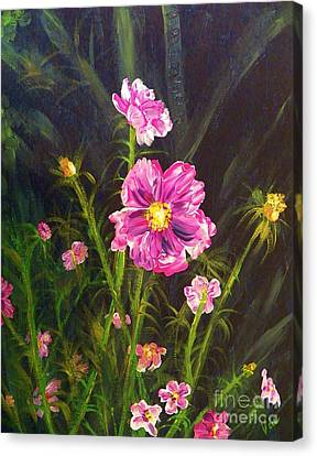 Painting Pink Streaked Cosmos Canvas Print by Judy Via-Wolff