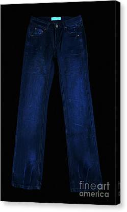 Pair Of Jeans 1 - Painterly Canvas Print by Wingsdomain Art and Photography